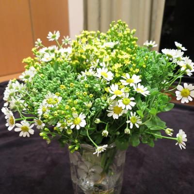 7周年のプレゼントお花