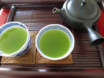 鹿児島の新茶