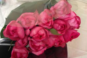 rose_birthday_20140625.jpg