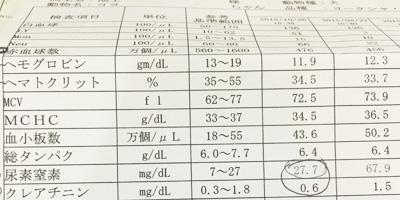 腎不全と水素カプセル