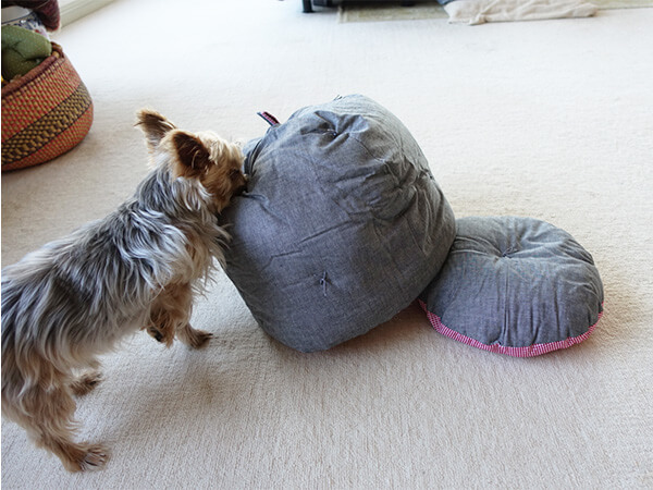 鍋帽子大きい