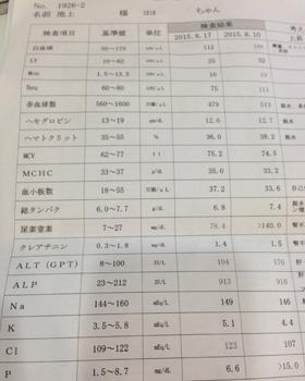 腎不全の血液検査結果
