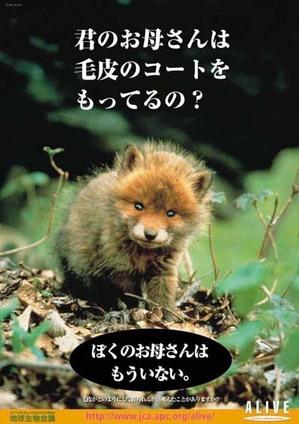no_fur.jpg