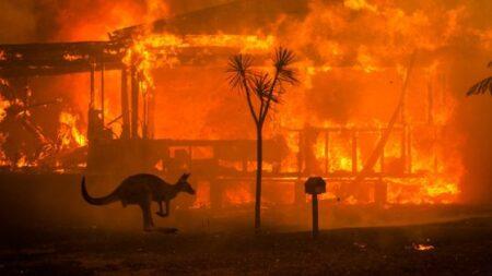 オーストラリアの火事