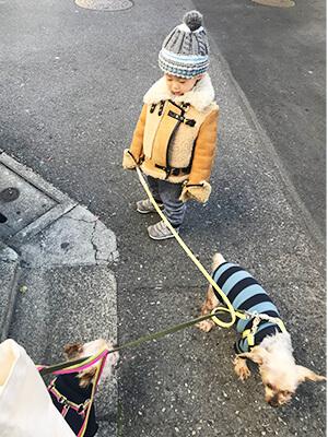 保護犬散歩