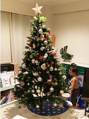 クリスマスツリー画像