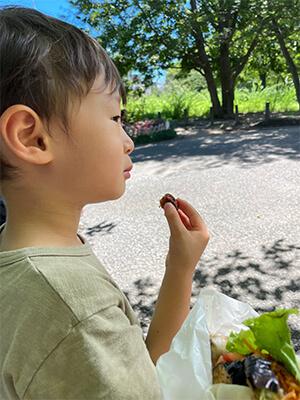 子供の夏休み公園