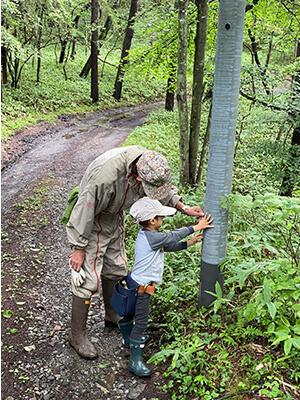 子供の夏休み森へ