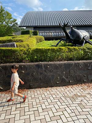 群馬自然史博物館