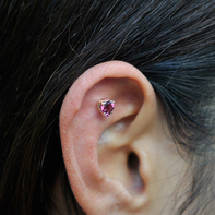 20120120outer-conch_01.jpg